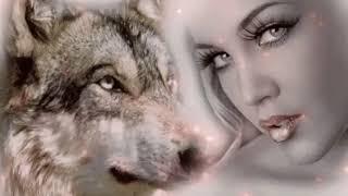 Просто одинокая волчица не любого сможет полюбить. Самая красивая песня. Слушать! Марина Попова