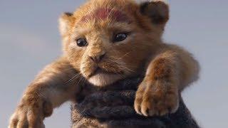 vuclip O Ciclo sem fim - O Rei Leão ( versão em português)