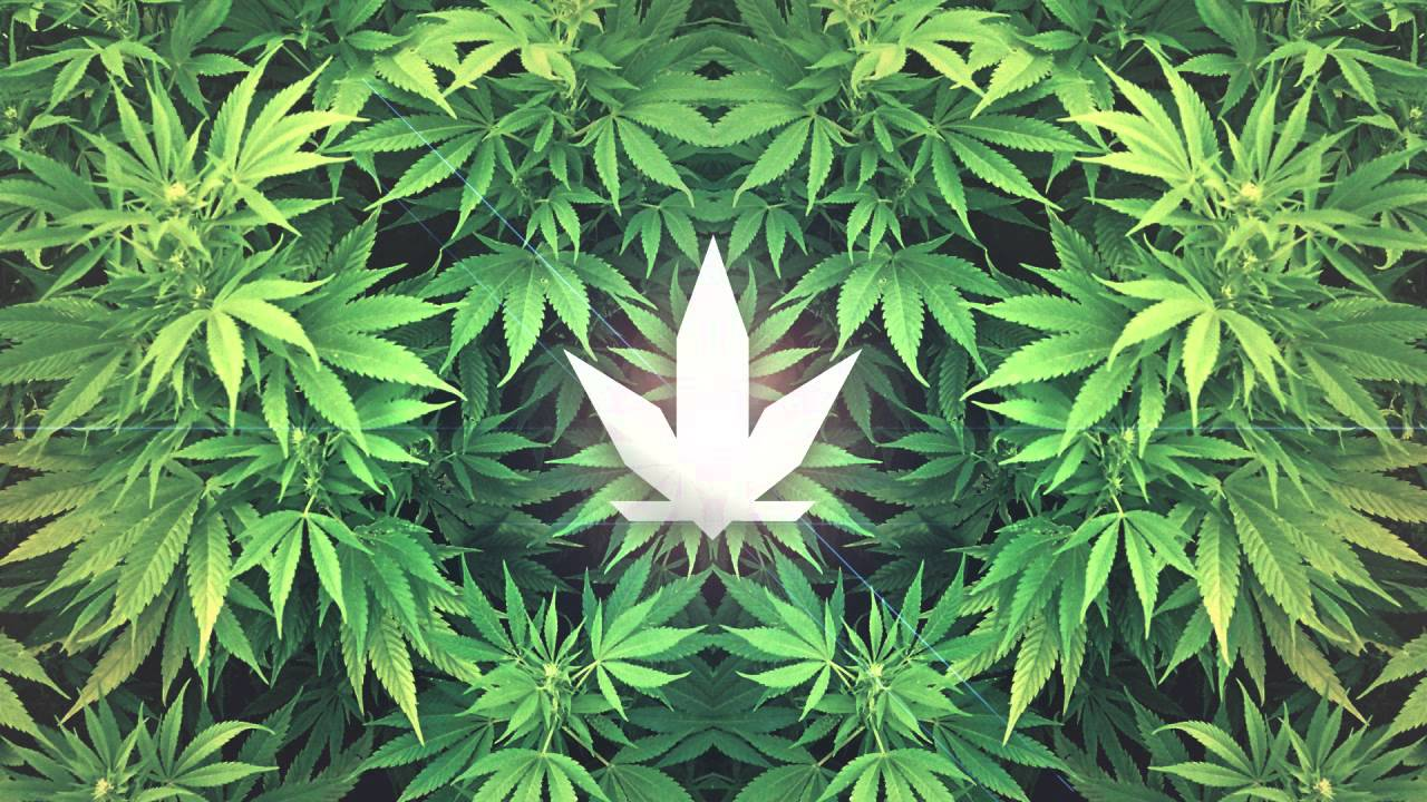 Slippe Feat. Gorillastar Militant - Love Fi Marijuana