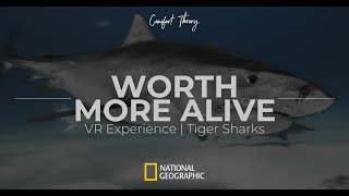 Worth More Alive - TIGERS SHARKS 360