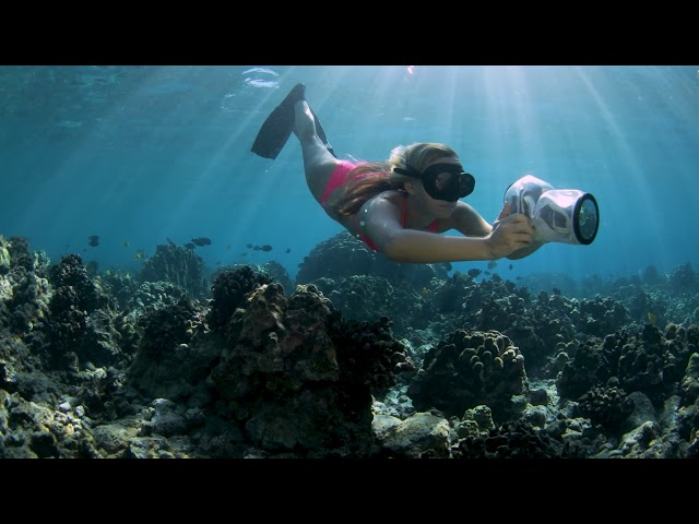 Outex lightweight waterproof camera housing with Alison Teal in Hawaii's Coral Reef