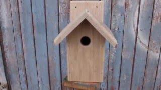 видео Домики для птиц