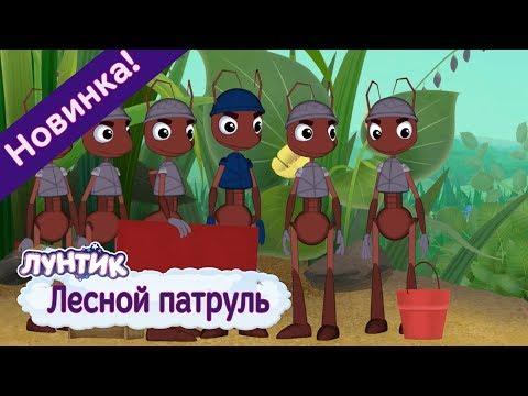 Лесной патруль ⭐️ Лунтик ⭐️ Новая серия. Премьера