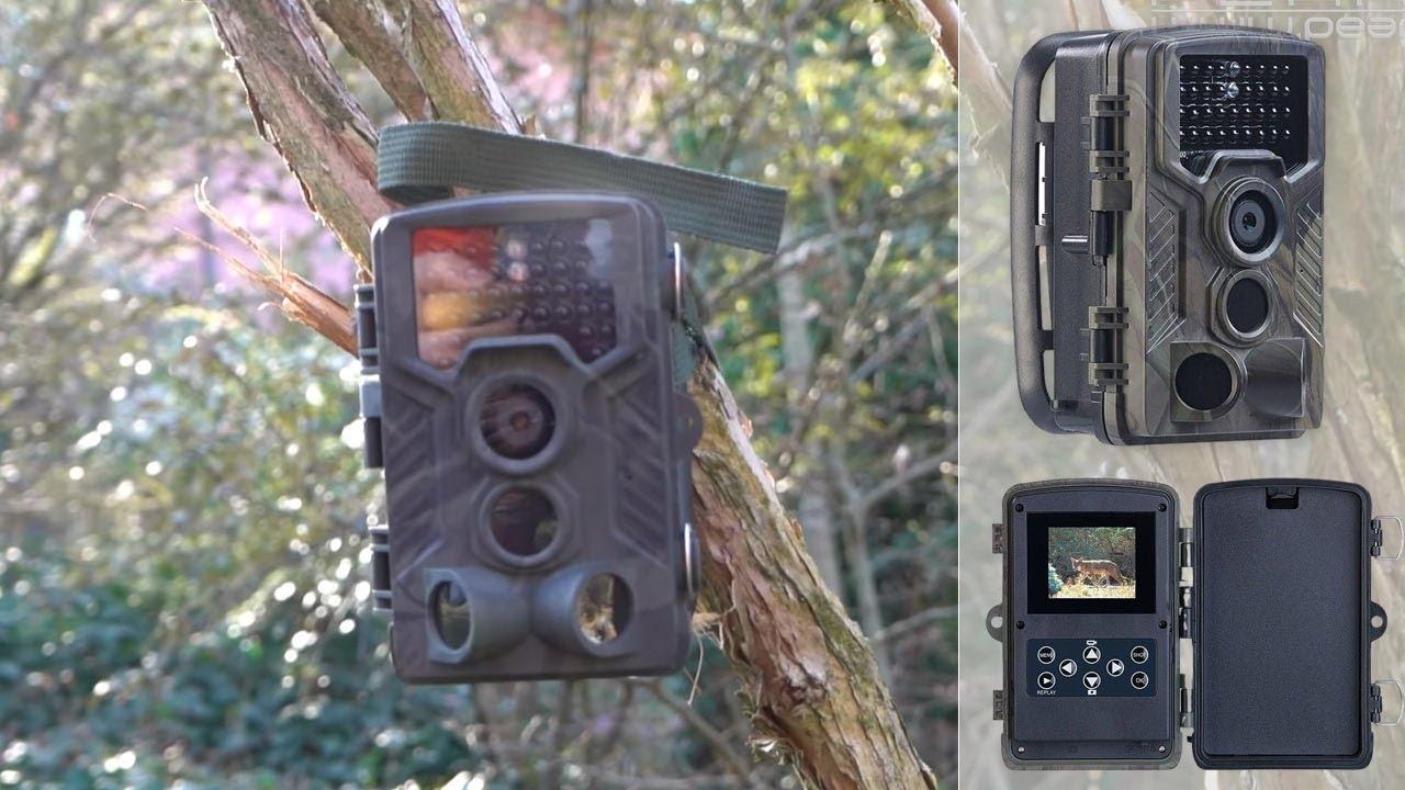 Download CAMERA NATURE - Chasse photographique + vidéo surveillance outdoor - [PEARLTV.FR]