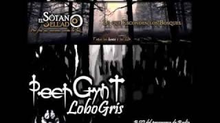 PeerGynt Lobogris - El Sotano Sellado BSO -- Jamendo - MP3 VBR 192k -2016.wmv
