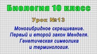 Биология 10 класс (Урок№13 - Моногибридное скрещивание. Первый и второй закон Менделя.)