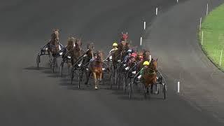 Vidéo de la course PMU PRIX DE MONTELIMAR