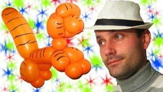 Кот, пудель, лев, тигр, собака из шарика шдм ★ dog , cat , tiger, lion , poodle from a balloon