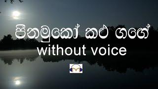 Peenamuko Kalu Gange Karaoke (without voice) පීනමුකෝ කළුගඟේ