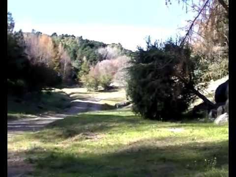 El Sibarita Tv / Prog 02 / Bosque Douglas (Villa Berna)