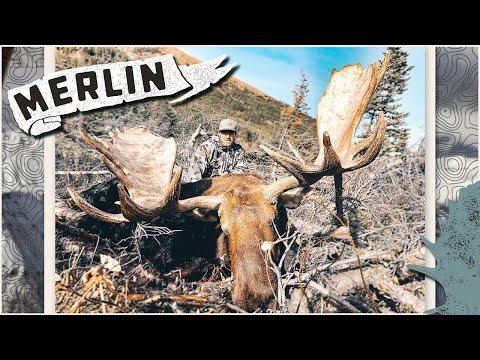 2018 British Columbia Record Book Moose Hunt