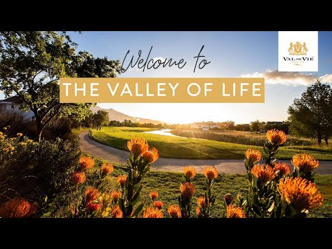Welcome to The Valley of Life
