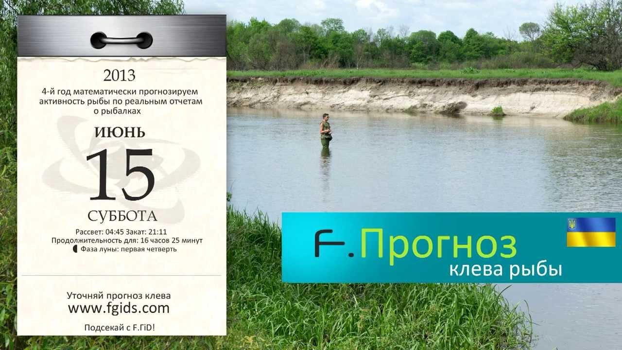 прогноз клева на неделю луганск