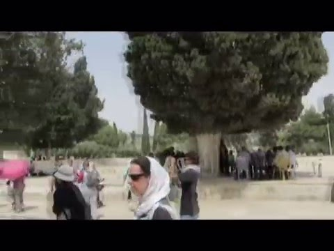 A visit to The Temple Mount, Old Jerusalem. Tour Guide: Zahi Shaked הר הבית עם צחי שקד