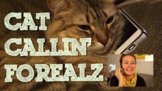 CAT CALLIN
