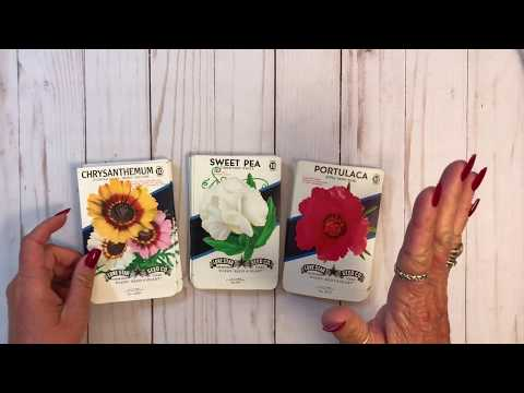 Vintage Seed Packets For Junk Journals