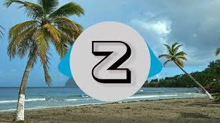 DJ Tiesto - Jackie Chan ft. Preme, Post Malone | Z-Music