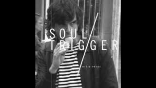 Mitja Prinz - Soul Trigger (Ian Pooley Remix)