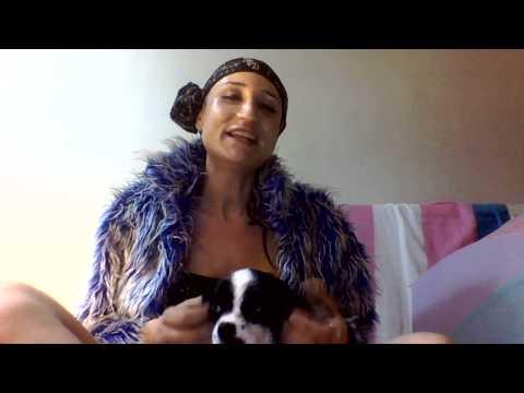 ''But Trans''  Travesti ve Transeksüel Güzellik Yarışması thumbnail