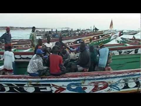 """EXTRAITS FILM """"Des aires marines pour protéger la pêche, réflexions en Afrique de l'Ouest""""  CSRP"""