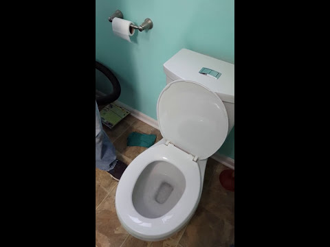 AS H2Option Dual Flush Round Front Toilet In White Seeds Review