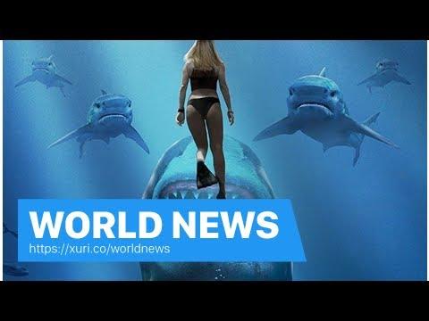 World News - The next part of the sharks Deep Blue Sea 2 was a first trailer