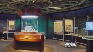 VIDEO: GulfQuest to Reopen with Lower Prices, Free Parking, New Shipwrecks Exhibit