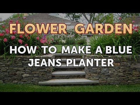 How to Make a Blue Jeans Planter