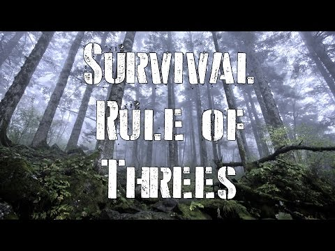 Survival Priorities and The Survival Rule of Threes
