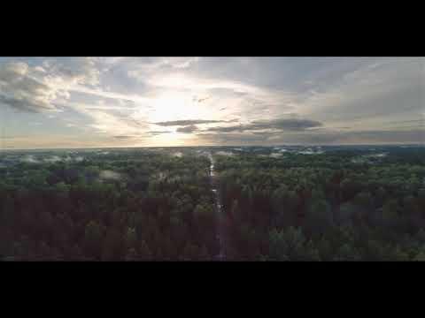 Lietuvos miškai iš drono skrydžio