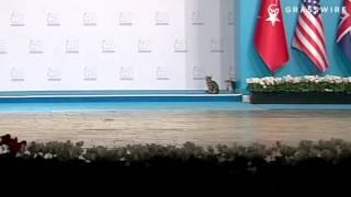 Raw video: Cats crash G20 Summit in Turkey