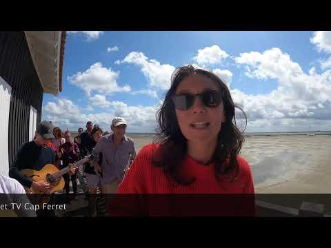 Aurelia - Clip à Île aux Oiseaux Cap Ferret Bassin d'Arcachon