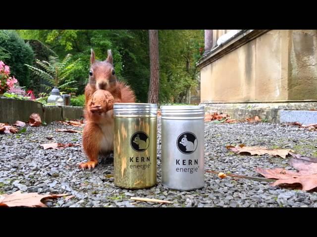 eichhörnchen kernenergie silber dose 20131013 110641
