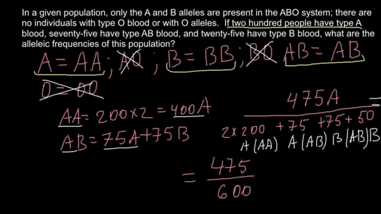 How to find allele frequency in a gene pool - YouTube