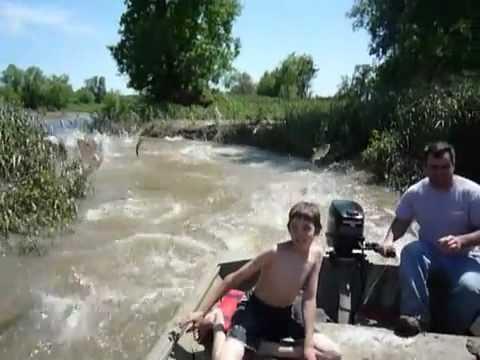 рыба атакует лодку