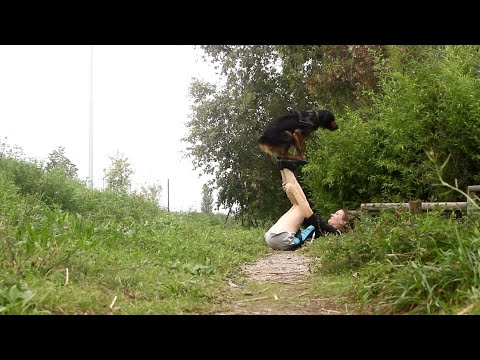 [This Must Be Love] Amazing Dog Tricks