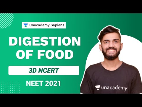 3D NCERT: Digestion of Food   Biology   NEET 2021   Anmol Sharma   Unacademy Sapiens