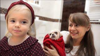 Cainele face baie | Anabella si mami il ajuta | Anabella Show