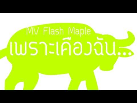 MV Flash(Maple) เพราะเคืองฉัน...