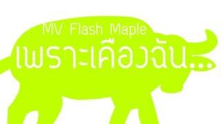 MV Flash เพราะเคืองฉัน...