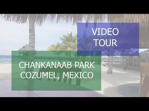 Video Tour of Chankanaab Park, Cozumel Mexico