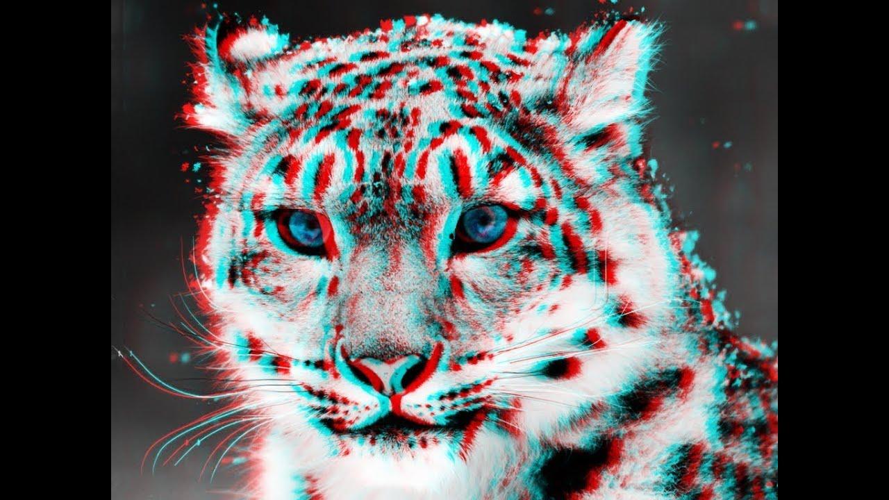 Cómo hacer imágenes en 3D en Photoshop: 24 pasos