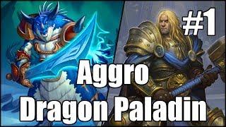 [Hearthstone] Aggro Dragon Paladin (Part 1)