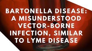 Dr. Tania Dempsey Vector Borne Diseases- Bartonella