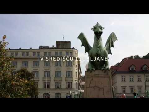 Univerza v Ljubljani, Pravna fakulteta (kratka različica)