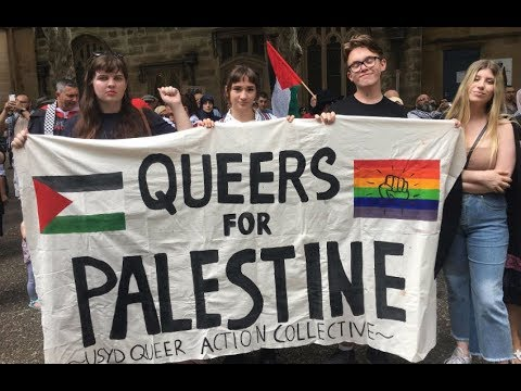 "Palestinians: What do you think of ""Queers for Palestine""?"