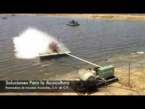 Oxigenador de cuerpos de agua for Aireadores para estanques piscicolas