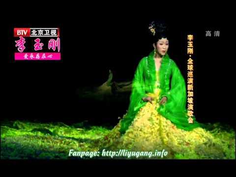 [ Lý Ngọc Cương 李玉刚 ] Cúc hoa đài 菊花台 [Vietsub] - Show Singapore 2013