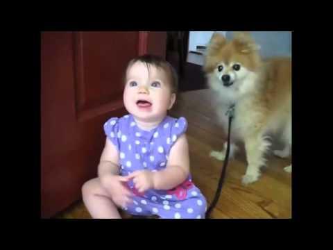 Babası eve gelen bebeklerin tepkileri :)