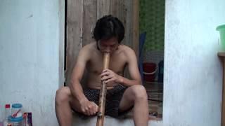 "Smoke ""Thuoc Lao"" in vietnam - Nicotiana rustica"